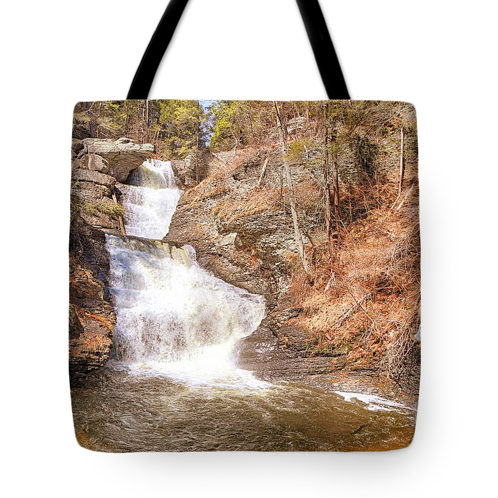 Water Tote Bag featuring the photograph Raymondskill Falls by Paul Fell