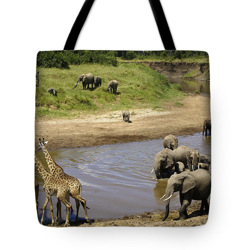 Africa Tote Bag featuring the photograph River Crossing by Michele Burgess
