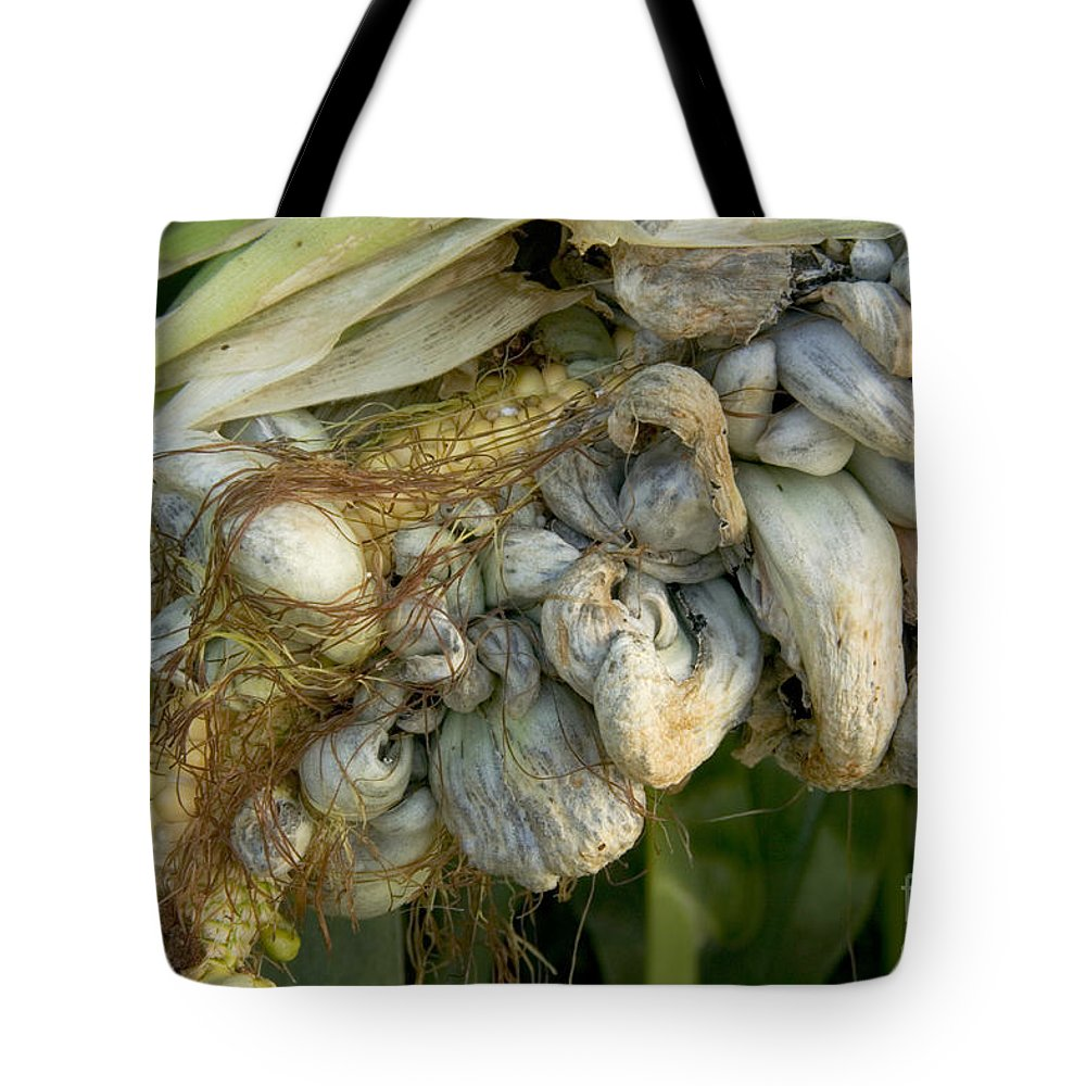 Corn Tote Bag Featuring The Photograph Smut Gall Fungus On A Ear By Inga Spence