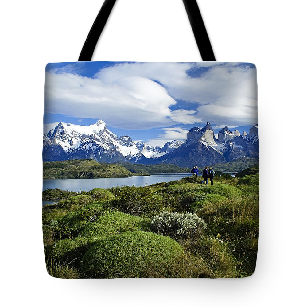 Patagonia Tote Bag featuring the photograph Springtime In Patagonia by Michele Burgess