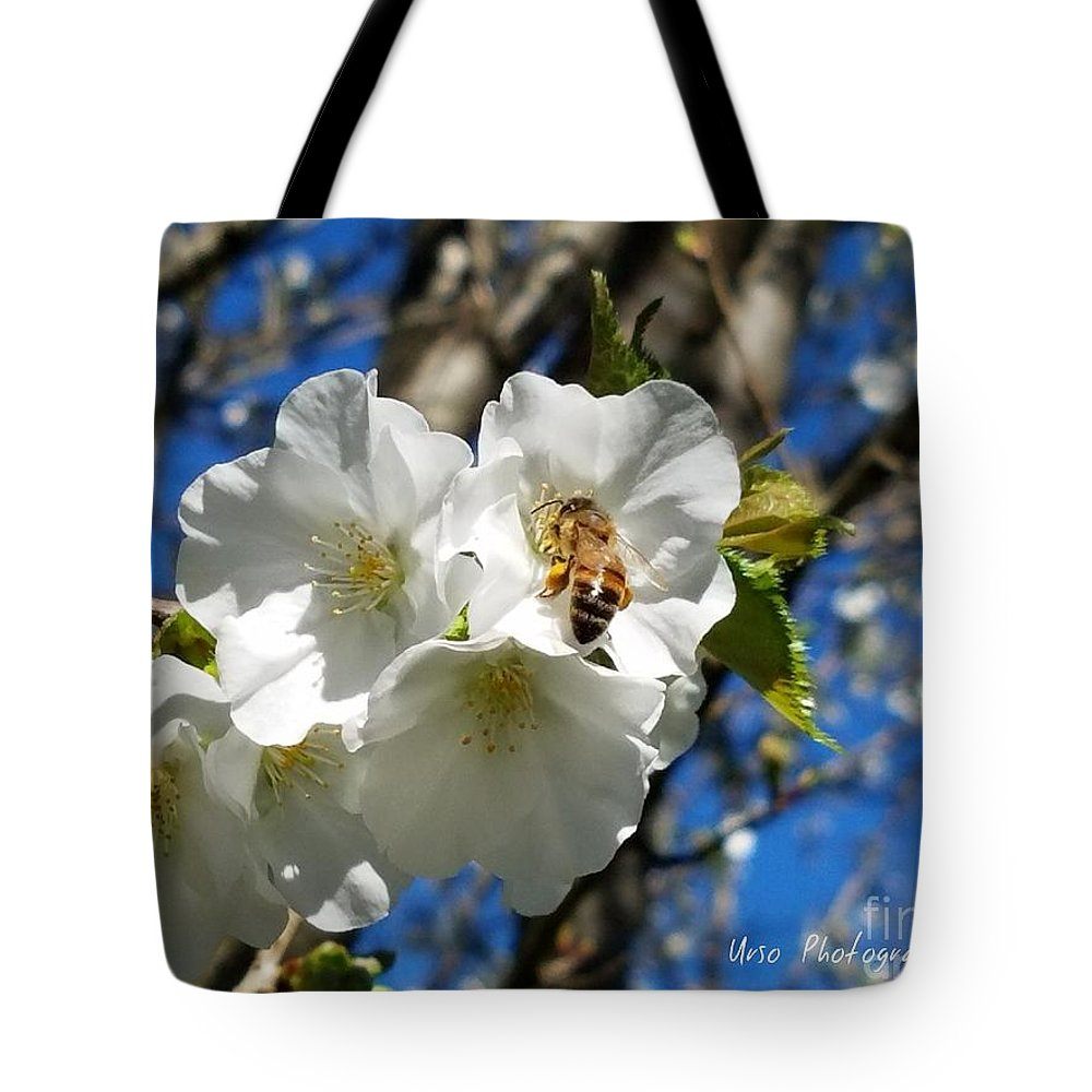 Sweet Stuff Tote Bag featuring the photograph Sweet Stuff by Maria Urso