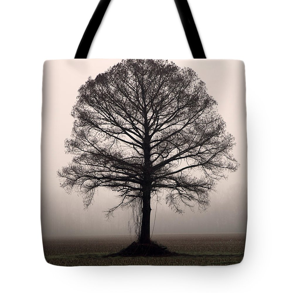 Trees Tote Bag featuring the photograph The Tree by Amanda Barcon