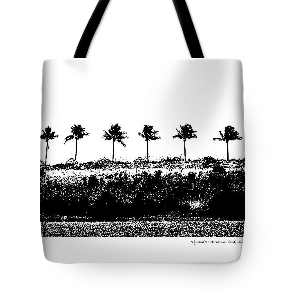 Beach Tote Bag featuring the photograph Tiger Tail Beach by Laurie Paci