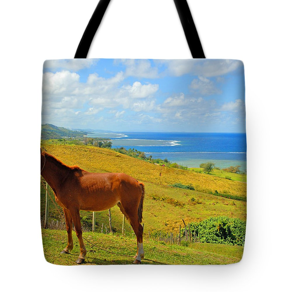 Afternoon Tote Bag featuring the photograph Viti Levu, Coral Coast by Himani - Printscapes