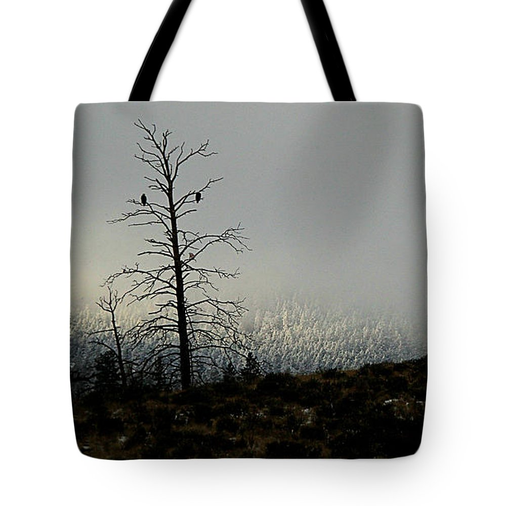 Eagles Tote Bag featuring the photograph Waiting by Roland Stanke