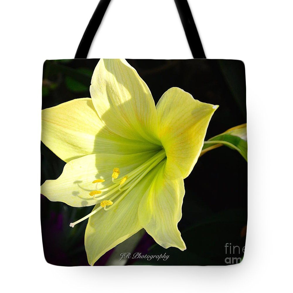 Welcome Spring Tote Bag featuring the photograph Welcome Spring by Jeannie Rhode