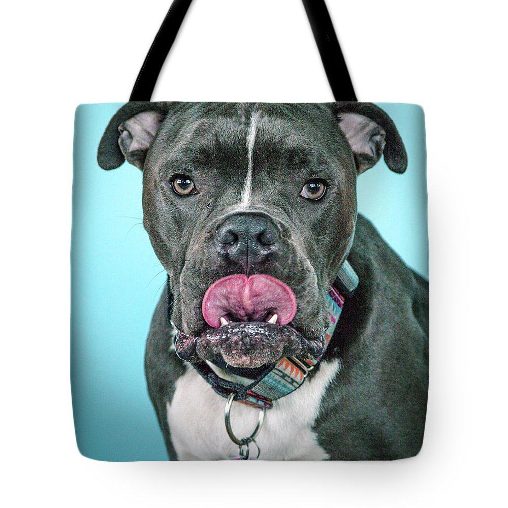 Dog Tote Bag featuring the photograph Wilbur by Pit Bull Headshots by Headshots Melrose