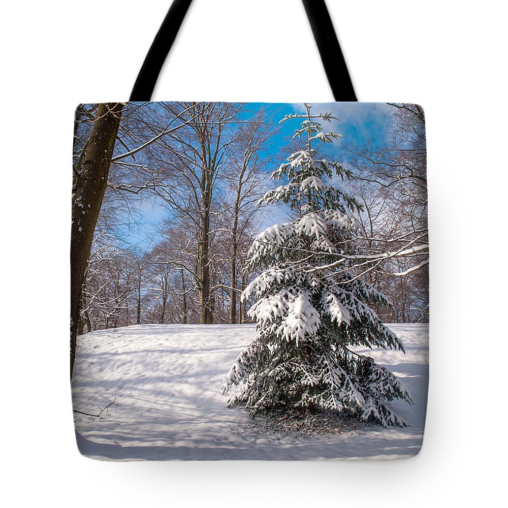 Winter Tote Bag featuring the photograph Winter Delight by Jenny Rainbow