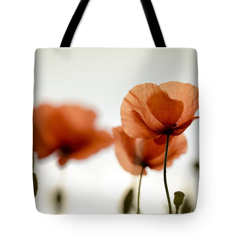 Poppy Tote Bag featuring the photograph Poppy Meadow 20 by Nailia Schwarz