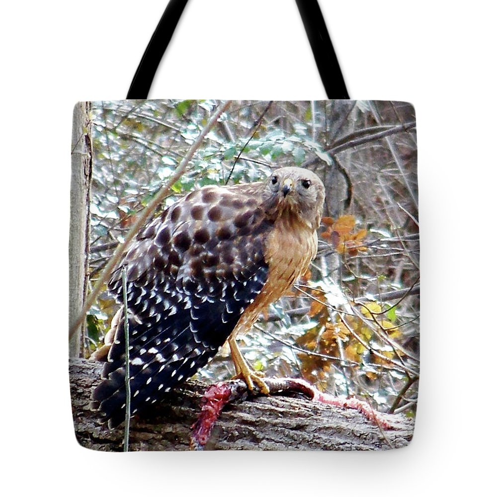 Hawk Tote Bag featuring the photograph 2005-hawk And Snake by Martha Abell