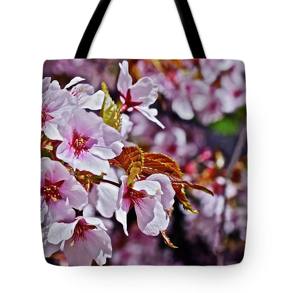 Cherry Trees Tote Bag featuring the photograph 2017 Earthday Olbrich Gardens Fuji Cherry 1 by Janis Nussbaum Senungetuk