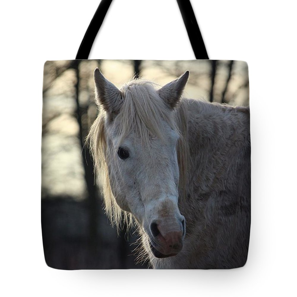 Horse Horses Tote Bag featuring the photograph Horse by FL Collection