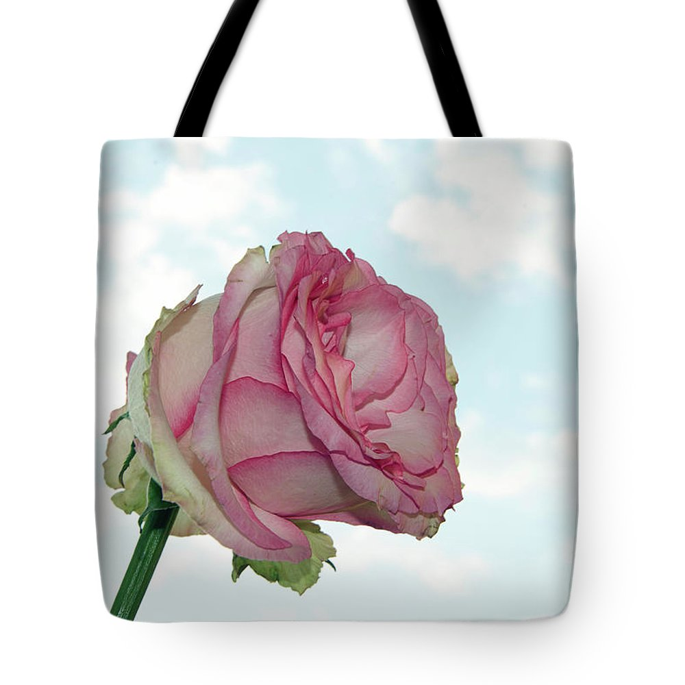 Flowers Tote Bag featuring the photograph Beautiful Rose by Elvira Ladocki