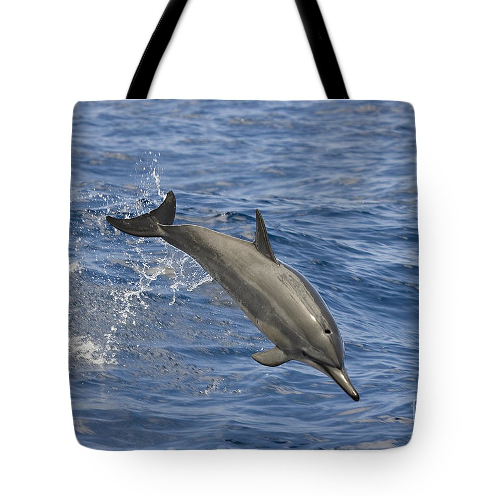 Alone Tote Bag featuring the photograph Dolphins Leaping by Dave Fleetham - Printscapes