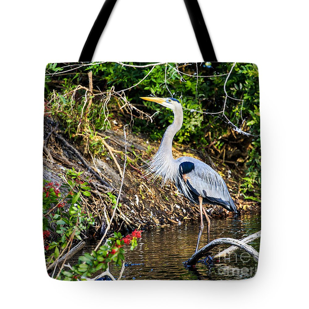 Great Blue Heron Tote Bag featuring the photograph Great Blue Heron by Ben Graham