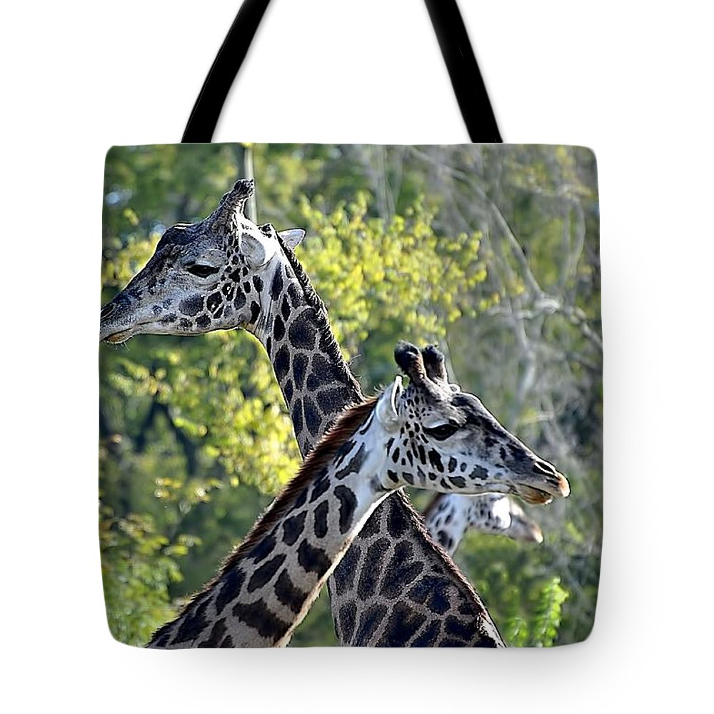 Animals Tote Bag featuring the photograph 3 Heads Are Better Than 1 by Jan Amiss Photography