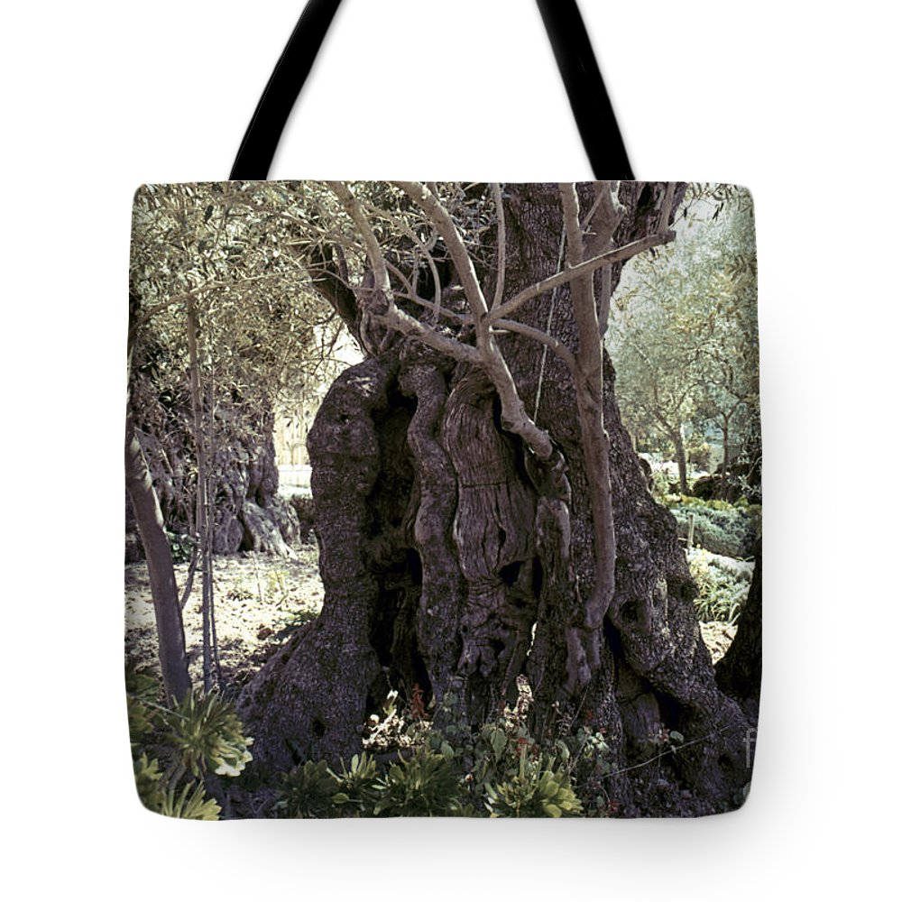 Garden Tote Bag featuring the photograph Holy Land: Jerusalem by Granger