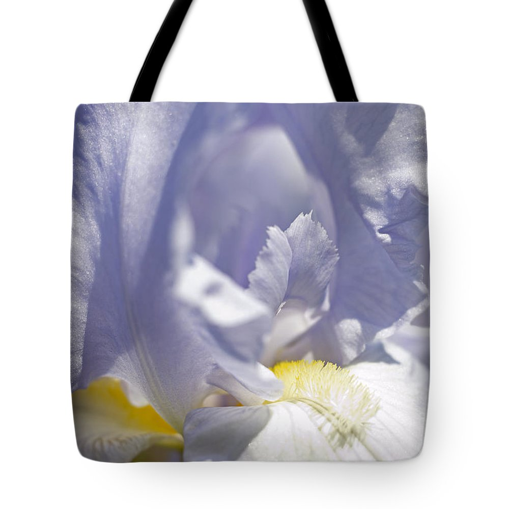Genus Iris Tote Bag featuring the photograph Iris Flowers by Tony Cordoza