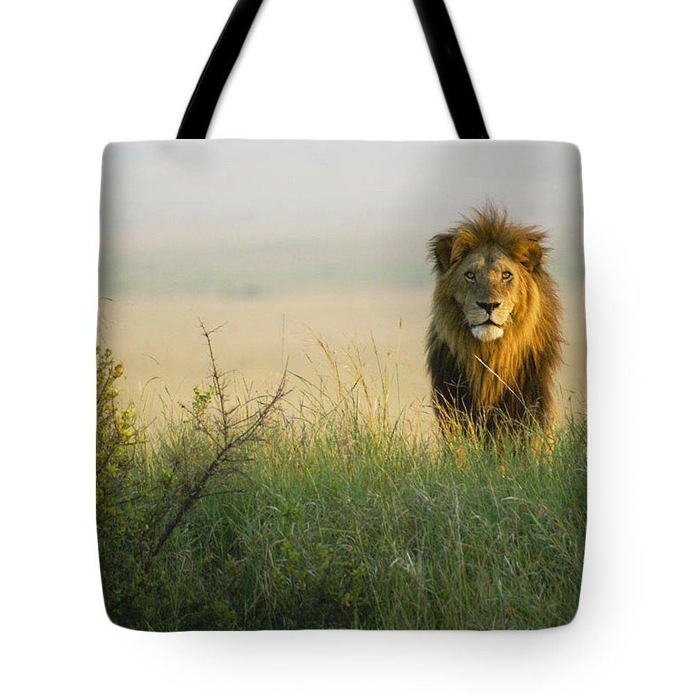 Lion Tote Bag featuring the photograph King Of The Savanna by Michele Burgess