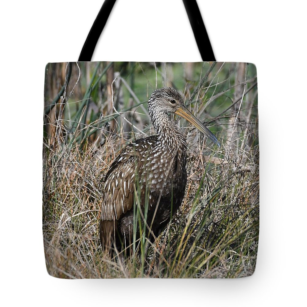 Limpkin Tote Bag featuring the photograph Limpkin by David Campione