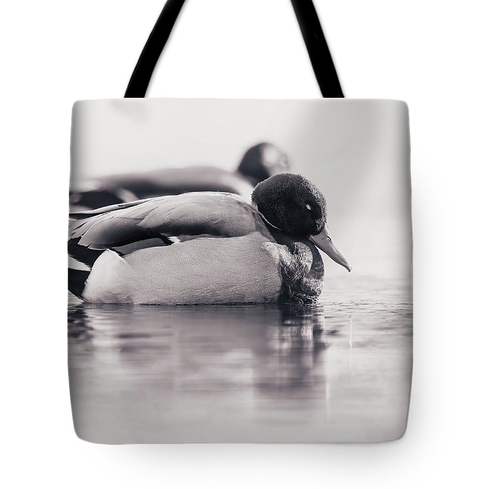Duck Tote Bag featuring the photograph Napping by Annette Bush