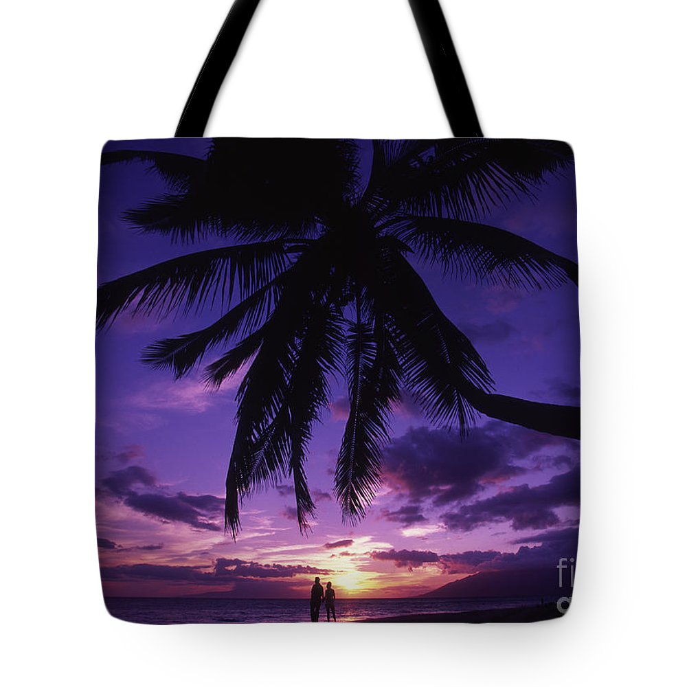 Beach Tote Bag featuring the photograph Palm Over The Beach by Ron Dahlquist - Printscapes