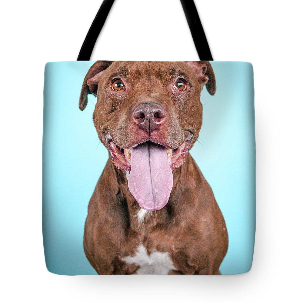 Dog Tote Bag featuring the photograph Queeny by Pit Bull Headshots by Headshots Melrose