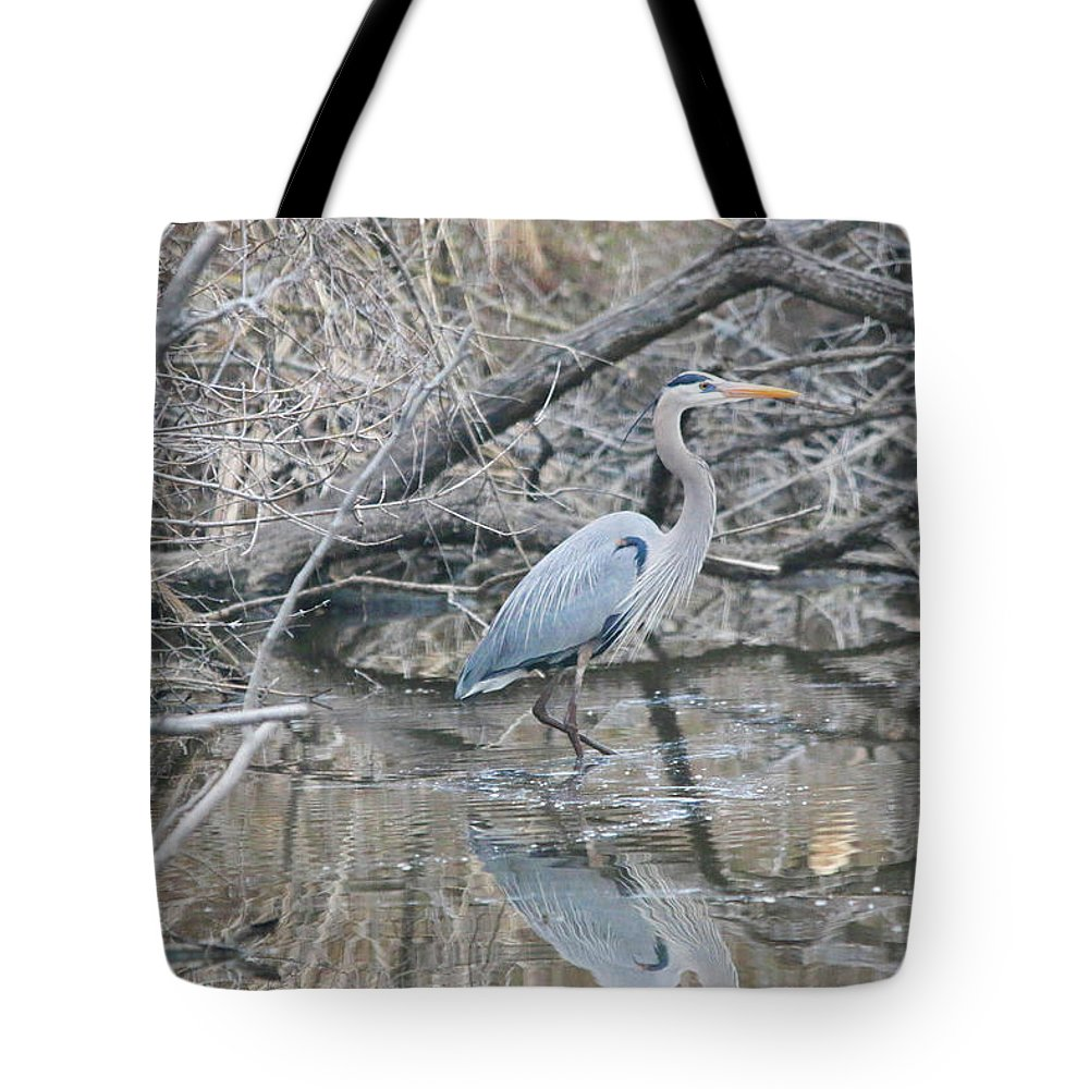 The Blue Heron (ardea Herodias) Is A Large Wading Bird In The Heron Family Ardeidae Tote Bag featuring the photograph The Great Blue Heron by William Rogers
