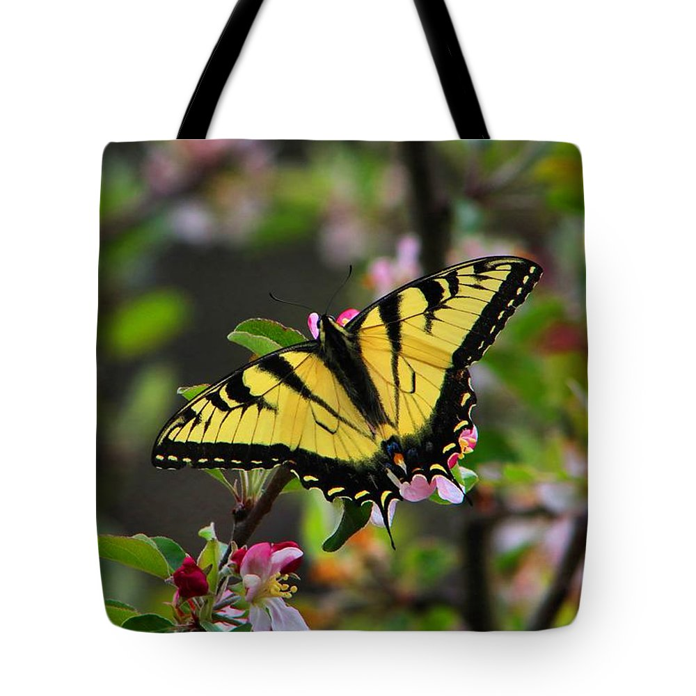 Swallowtail Tote Bag featuring the photograph Tiger Swallowtail by Kathryn Meyer