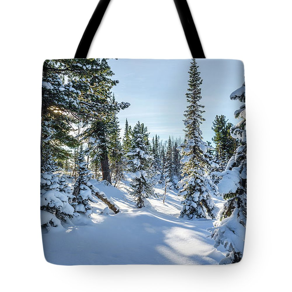 Amazing Tote Bag featuring the photograph Amazing Landscape With Frozen Snow-covered Trees In Winter Morning by Oleg Yermolov
