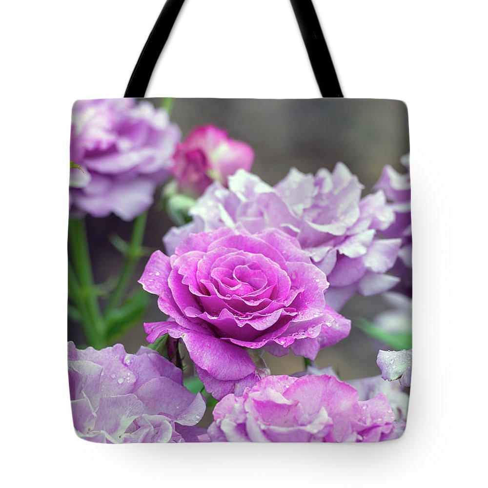 Rose Tote Bag featuring the photograph 3396 by Terri Winkler