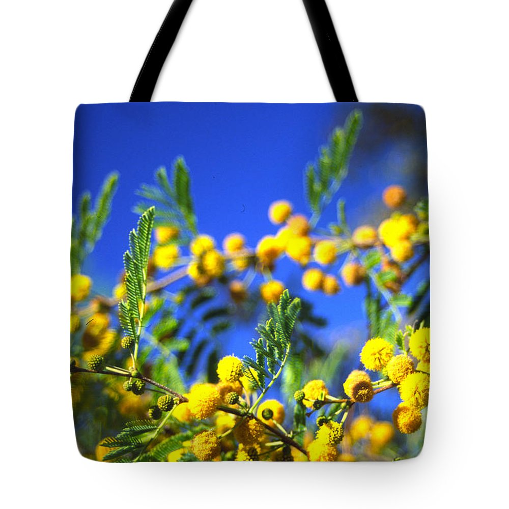 Tree Blooms Tote Bag featuring the photograph 3rd Dimension by Randy Oberg