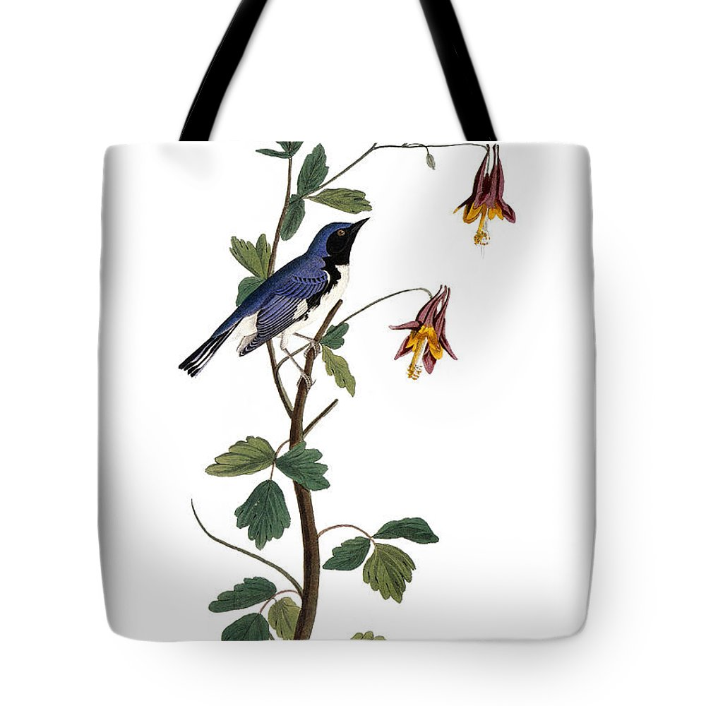 1827 Tote Bag featuring the photograph Audubon: Warbler, (1827-38) by Granger