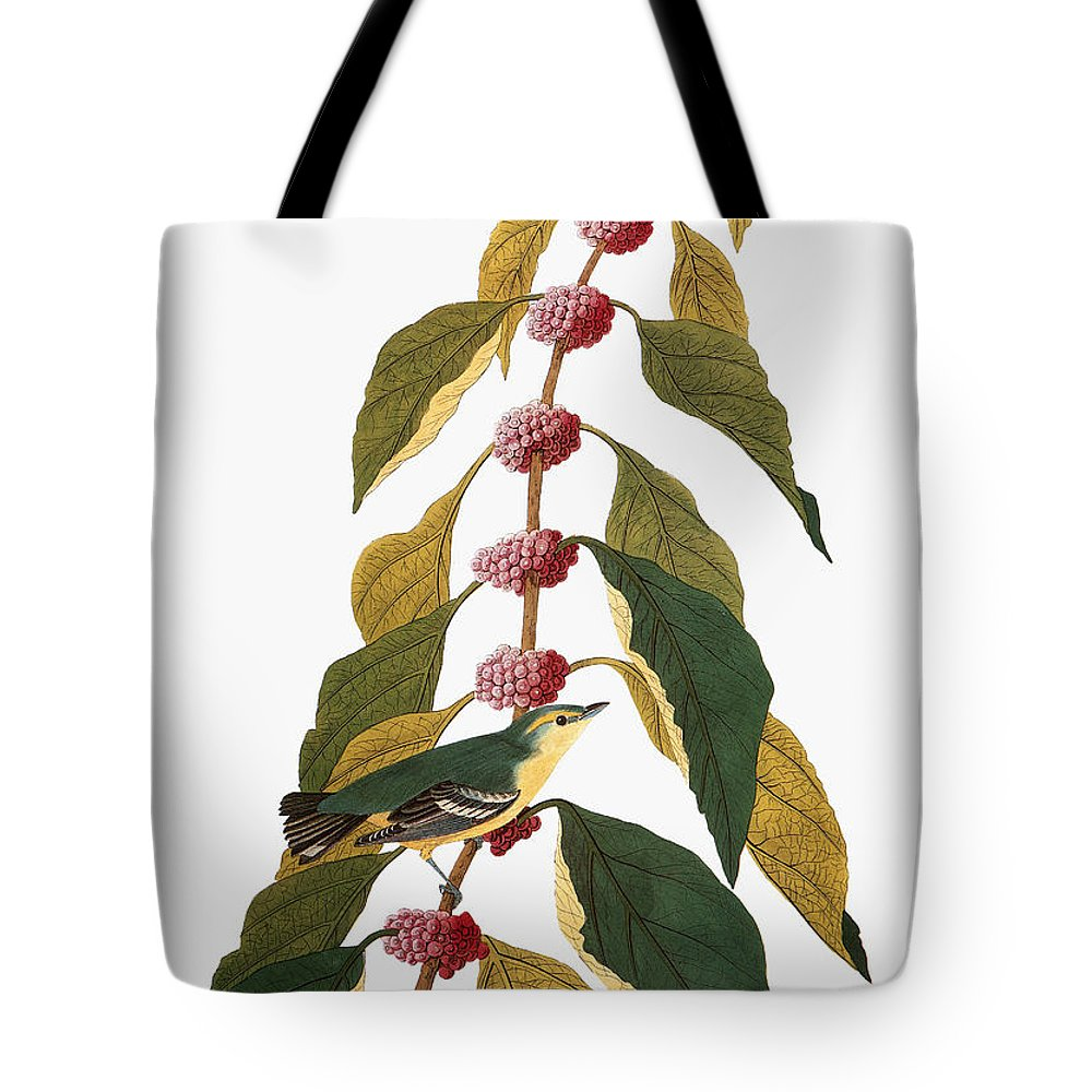 1838 Tote Bag featuring the photograph Audubon: Warbler by Granger