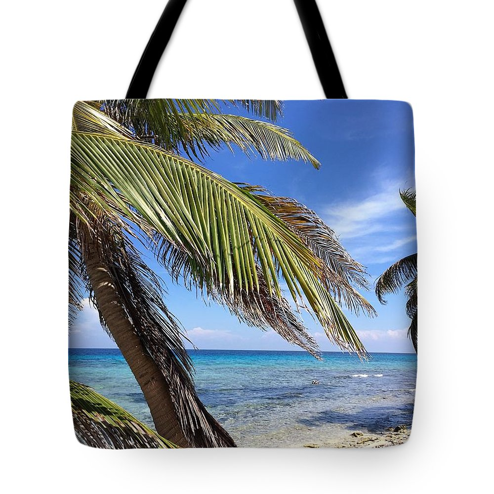 Beach Tote Bag featuring the photograph Laughing Bird Caye by Julia Breheny