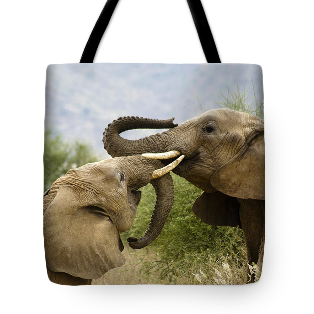 Africa Tote Bag featuring the photograph Playtime by Michele Burgess