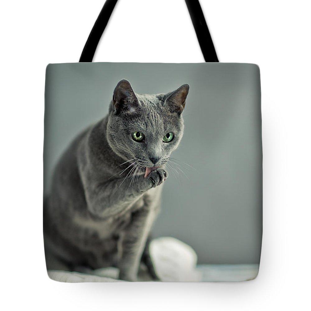 Pastel Portrait Photographs Tote Bags