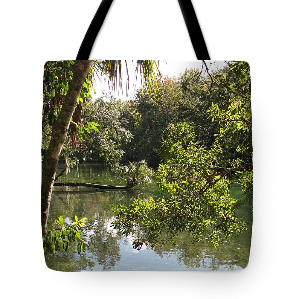 Swamp Tote Bag featuring the photograph Swamp Reflection by Christiane Schulze Art And Photography