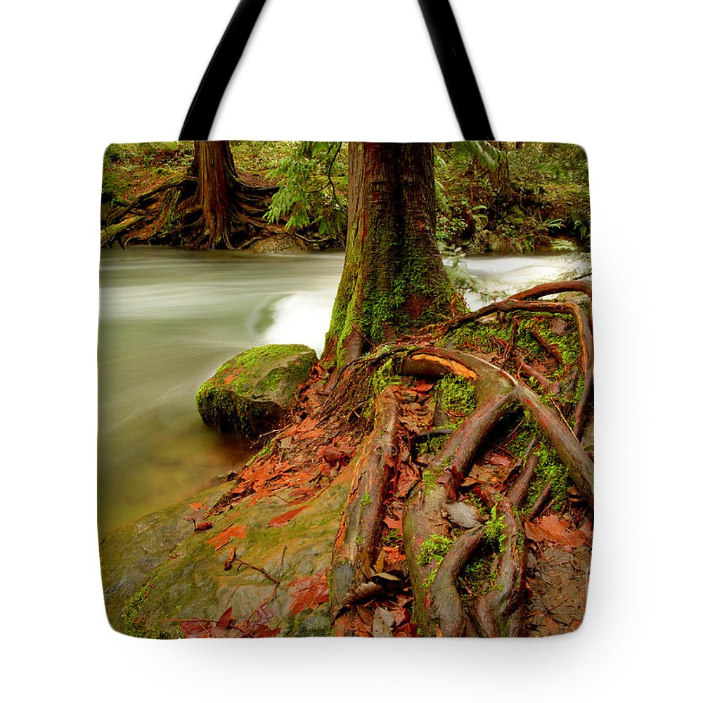 Northwestern Washington Tote Bag featuring the photograph Whatcom Creek by Idaho Scenic Images Linda Lantzy