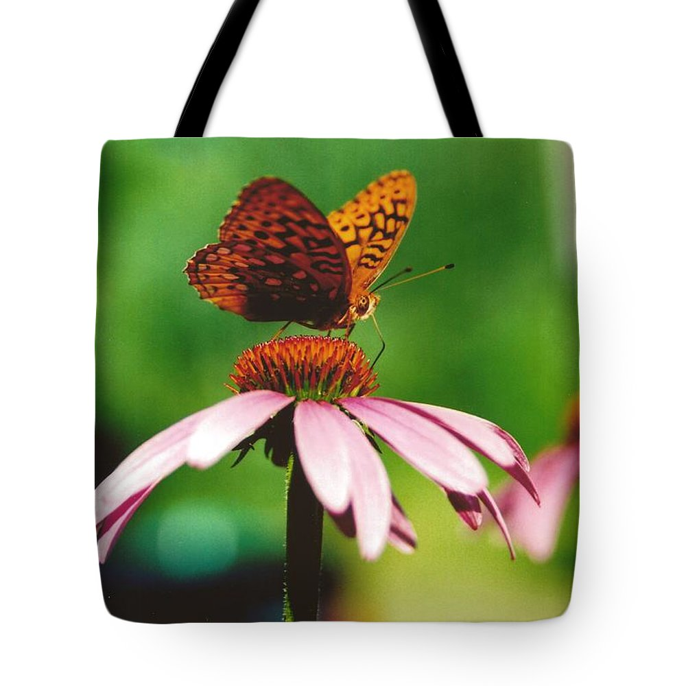 #416 14a Butterfly Coneflower Lunch Break Tote Bag featuring the photograph #416 14a Butterfly Fritillary, Coneflower Lunch Break Good Till The Last Drop by Robin Lee Mccarthy Photography