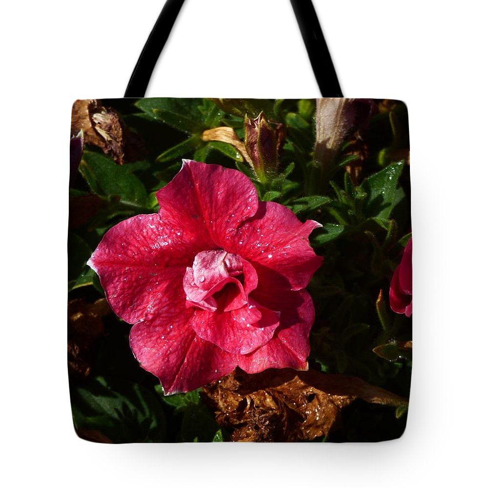 Paul Stanner Tote Bag featuring the photograph Catch The Wind by Paul Stanner