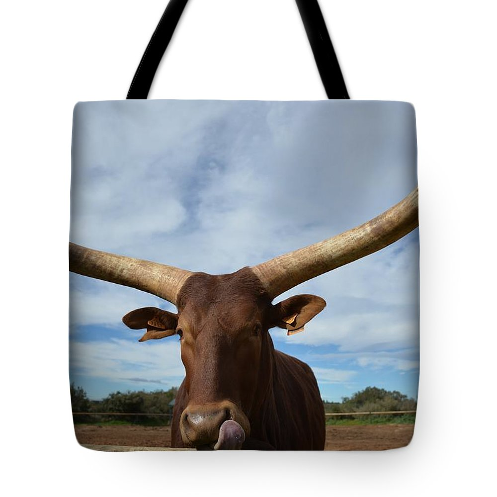 Cow Tote Bag featuring the photograph Cow by FL collection