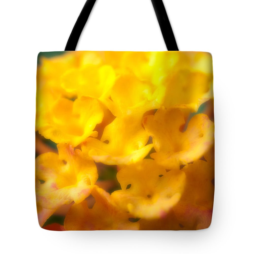 Flower Tote Bag featuring the photograph Flower by Sebastian Musial