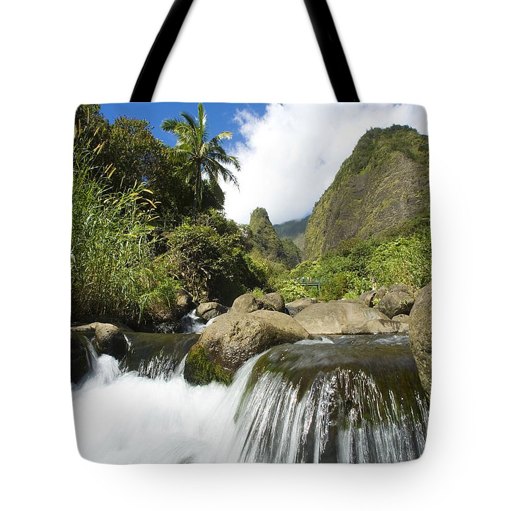 Afternoon Tote Bag featuring the photograph View Of Iao Needle by Ron Dahlquist - Printscapes