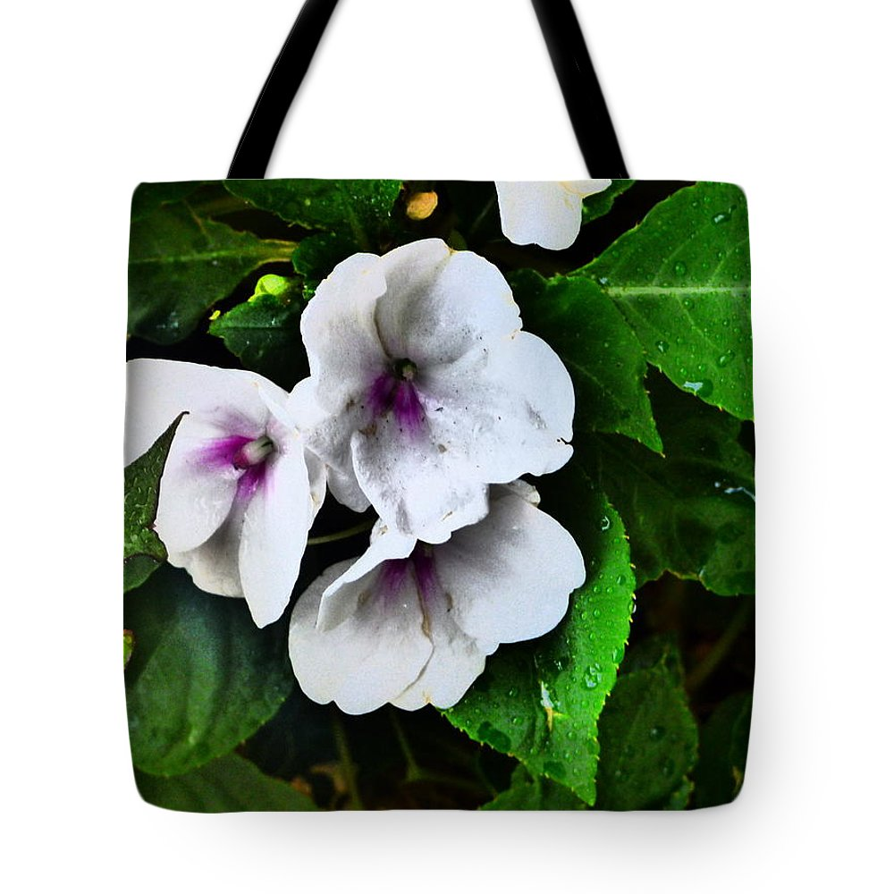 Idaho Spring Flowers Gardens Floral Paul Stanner Tote Bag featuring the photograph Caravan Of Dreams by Paul Stanner