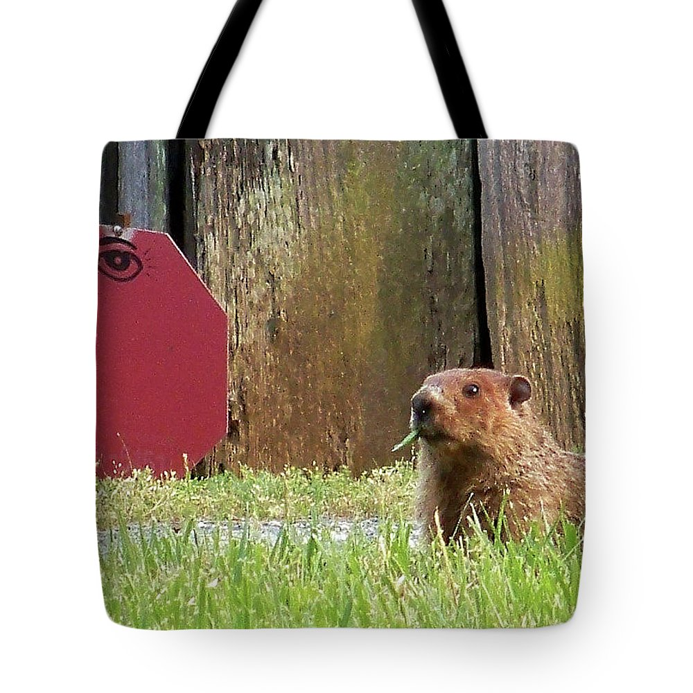 Groundhog Tote Bag featuring the photograph 5002-groundhog by Martha Abell