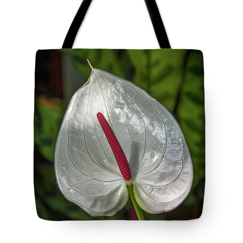 Florida Tote Bag featuring the photograph 5129- Flower by David Lange