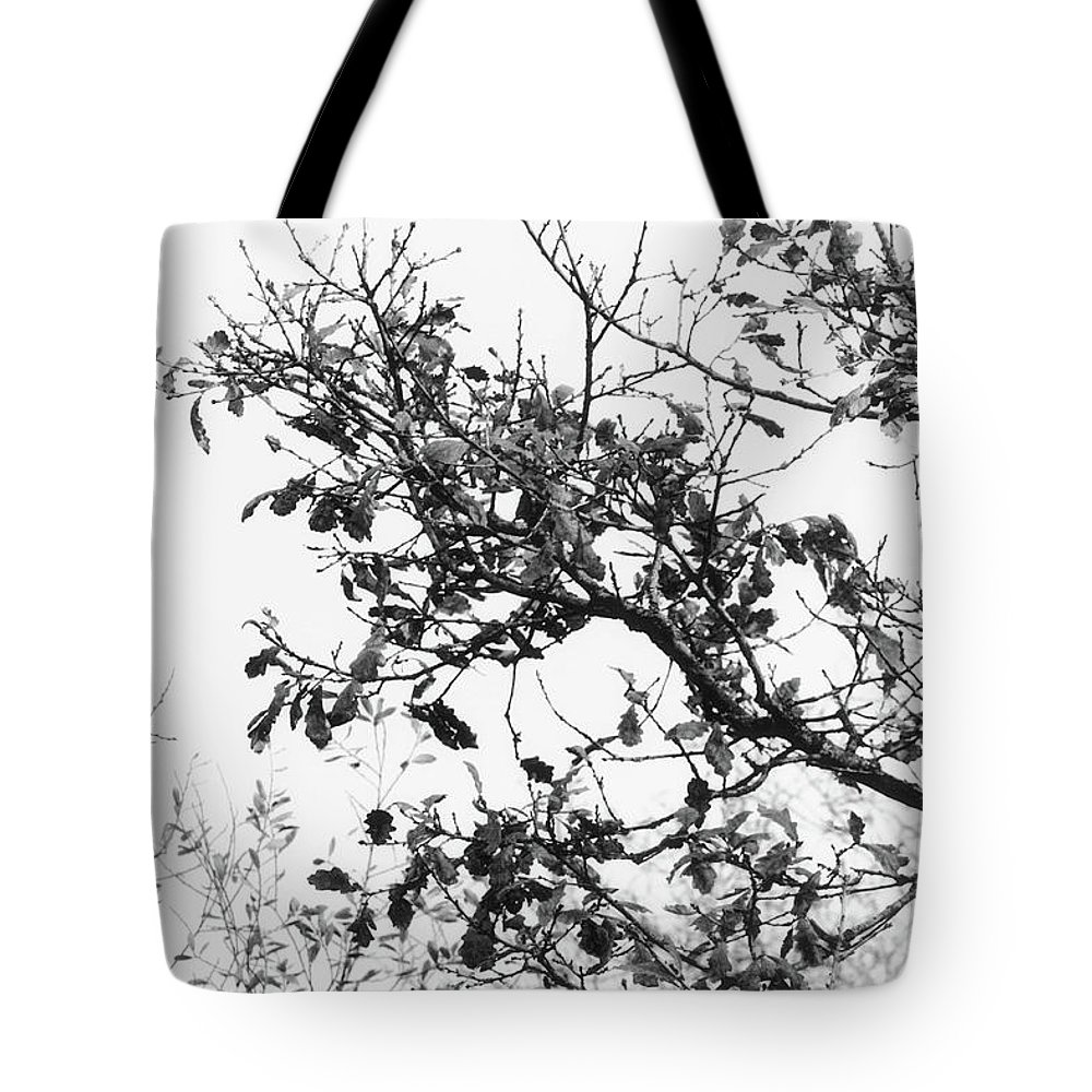 Nature Tote Bag featuring the digital art Nature by Frances Lewis