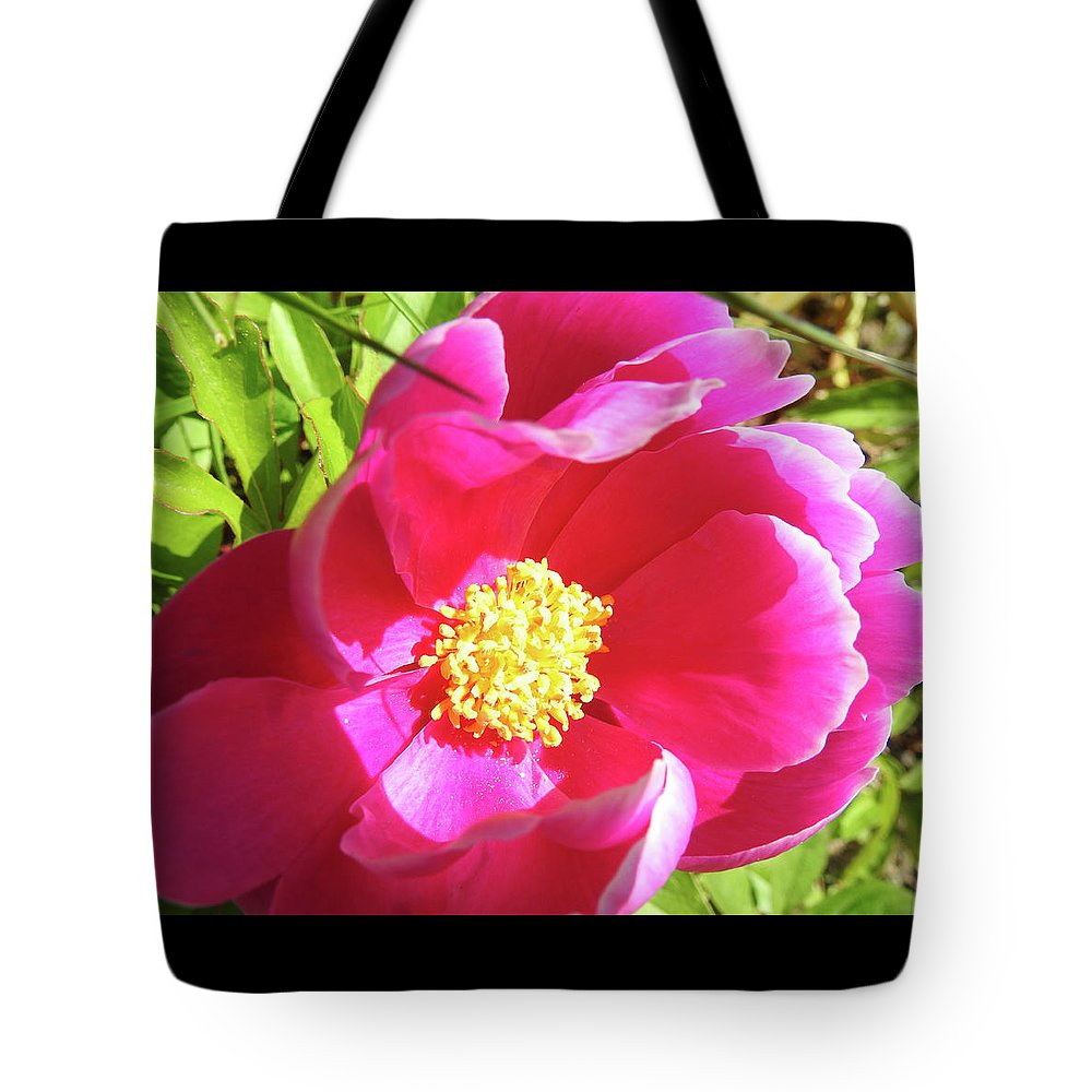 Don't Drop The Crystal Ball Tote Bag featuring the photograph 6-11-17--9685 Don't Drop The Crystal Ball by Vicki Hall
