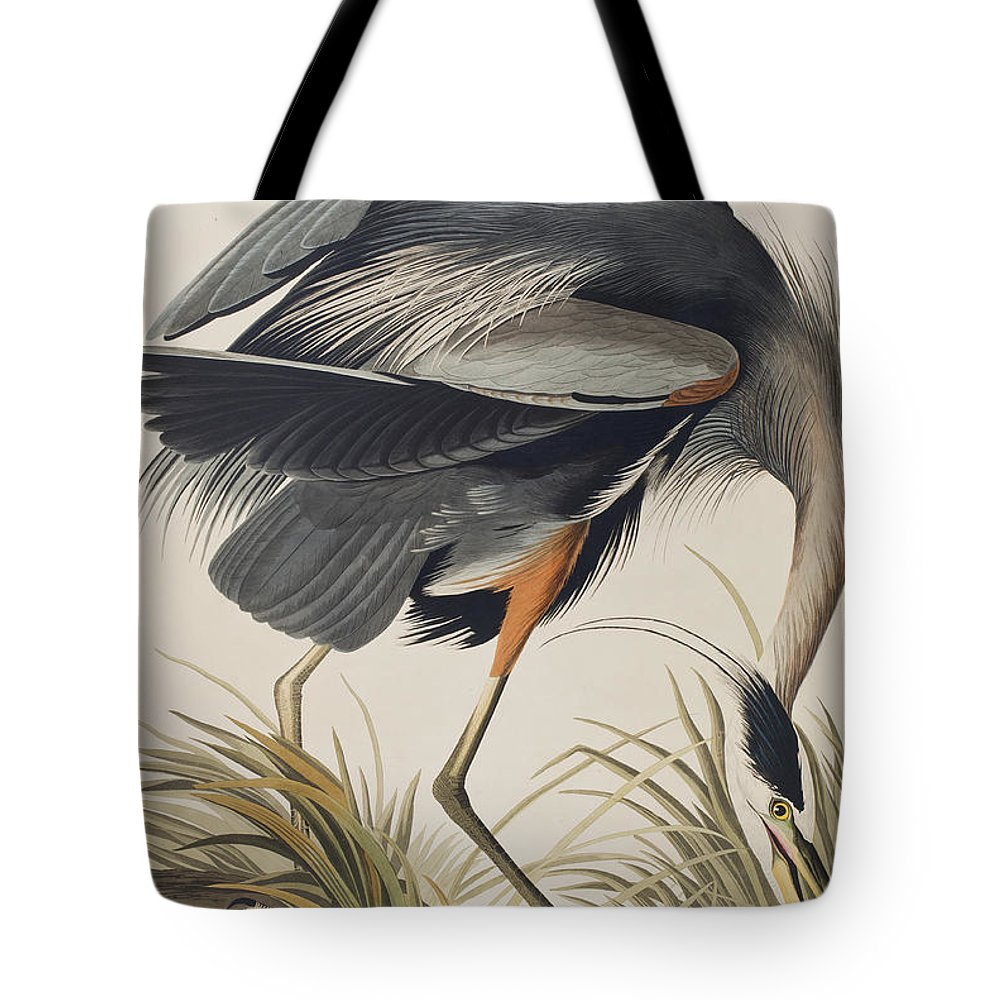 Great Blue Heron Tote Bag featuring the painting Great Blue Heron by John James Audubon